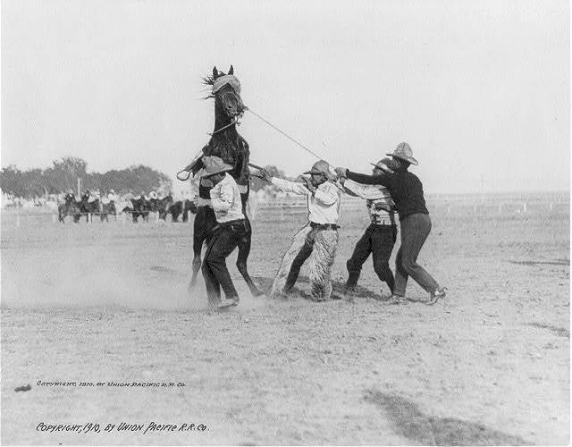 Unruly Butcher Bob, Cheyenne Frontier Days