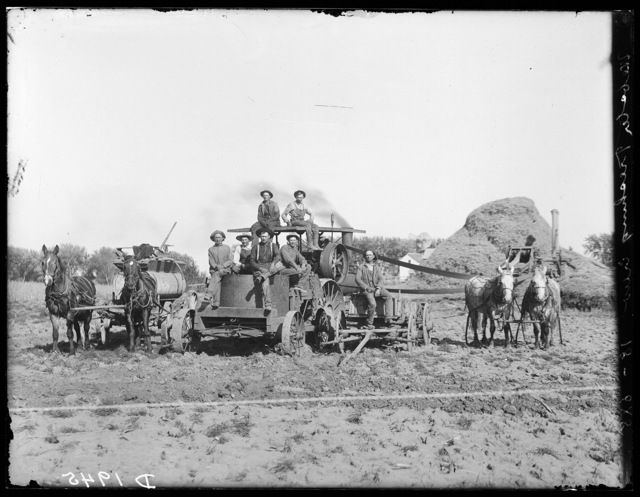 Webster threshing crew, north of Gibbon, Nebraska.