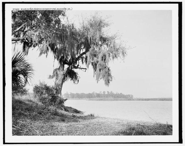 Wilmington River at Bonaventure, Savannah, Ga.