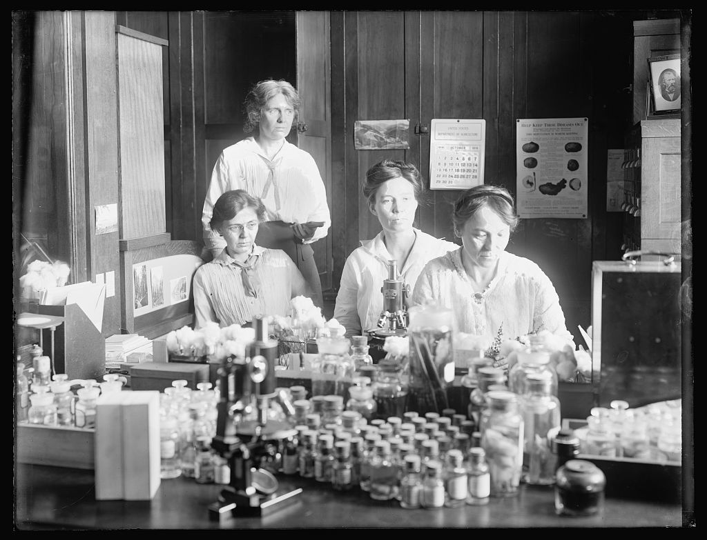 Women scientists: standing: Miss Nellie A. Brown; L to R: Miss Lucia McCollock, Miss Mary K. Bryan, Miss Florence Hedges, The women scientists make cultures of the parasites make [...]ulation experiments and all sorts of technical laboratory work