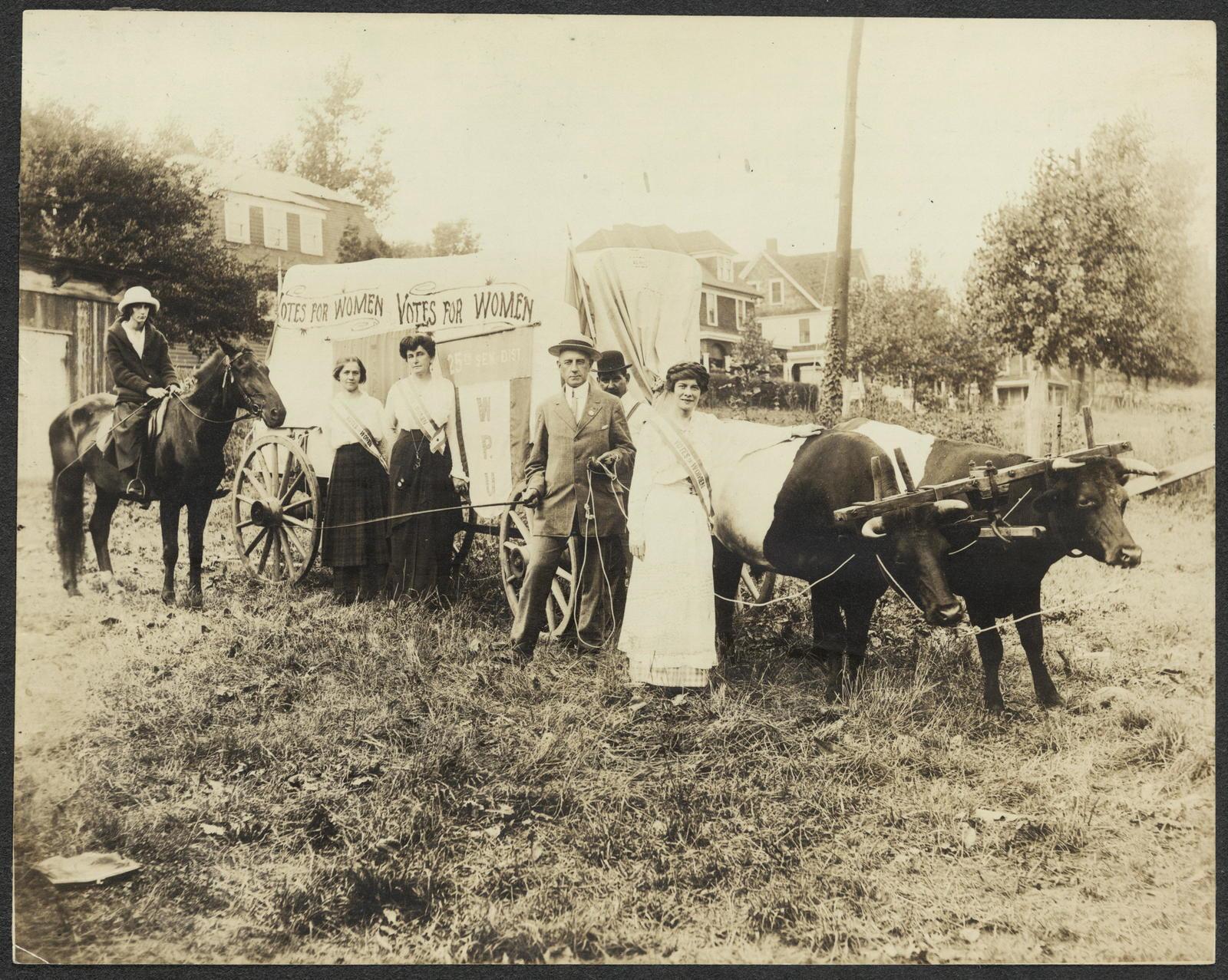 Women's Political Union delegation, Western New York, ca. 1910-1915. Phyllis Miller, [W]igger [the] Horse, Ida Armquist, Elisabeth Worth Miller, Jack McGee, Alfred Thompsen, Elisabeth Freeman, Teddy & Taft [the] Oxen.