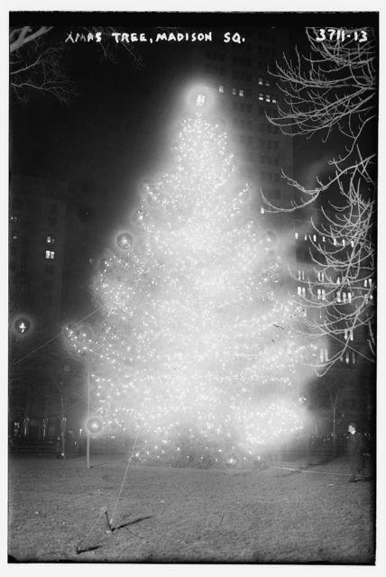 Xmas tree - Madison Sq.