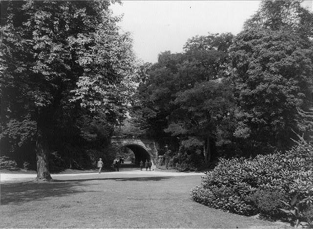 A view in Prospect Park, Brooklyn, New York City