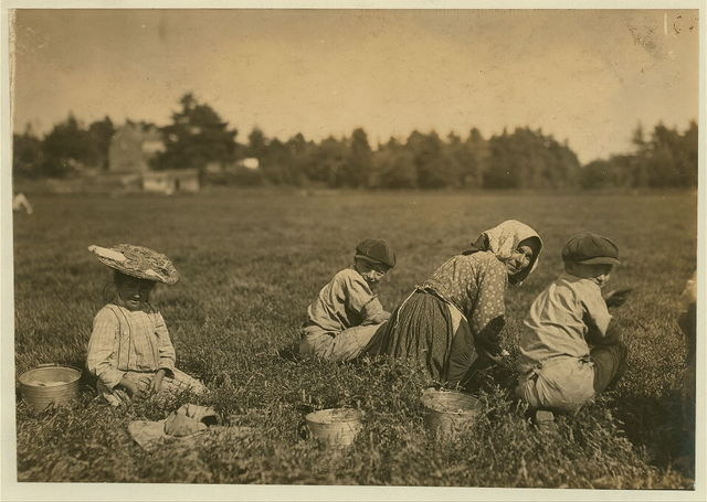 Abbe, said 10 years old who picks 10 pails a day. Also two young Italian illiterates.  Location: Rochester [vicinity] Eldridge Bog, Massachusetts.