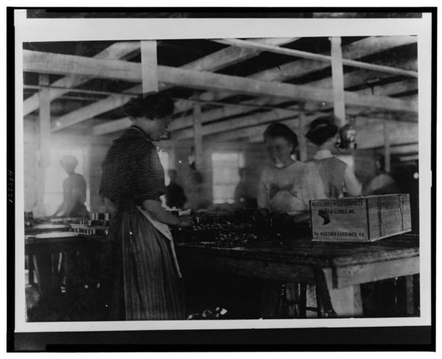 Adult packers in the Lawrence Canning Co., near Lubec, showing packing process. There are few children so used at this part of the work as yet, but are likely to be, as the process is cheapened.  Location: Lubec, Maine.