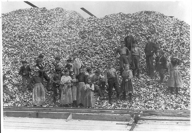 All these children (except babies) shuck oysters and tend babies at the Pass Packing Co. I saw them all at work there long before daybreak. Photos taken at noon in the absence of the Supt. who refused me permission because [of?] Child Labor agitation. Factory belongs to Dunbar, Lopez, Dukate Co.  Location: Pass Christian, Mississippi.