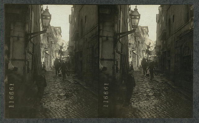 Cobblestones, dirt and dogs in a typical thoroughfare of  Constantinople, Turkey