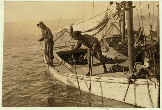 Fred, a young oyster fisher; working on an oyster boat in Mobile Bay, the Reef, near Bayou La Batre, said he was fourteen, but not likely.  Location: Bayou La Batre, Alabama.