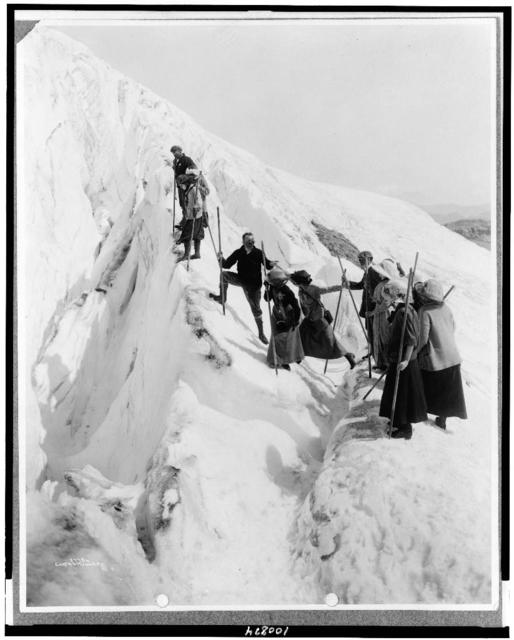 [Group of men and women climbing Paradise Glacier in Mt. Rainier National Park, Washington] / Curtis & Miller.