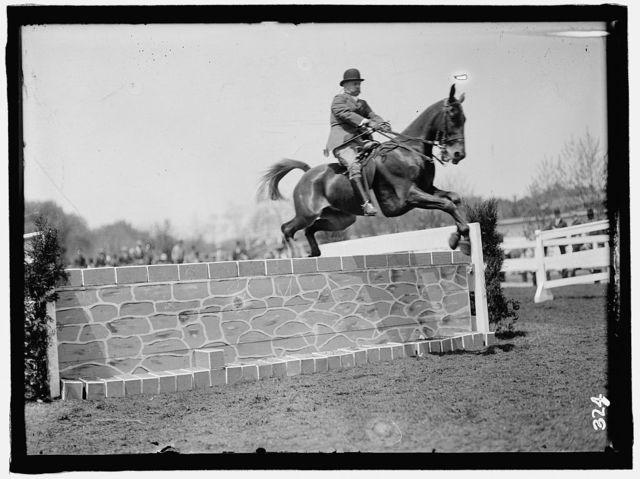 HORSE SHOWS. COL. A.W. DUNN, HURDLING