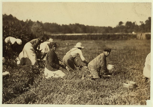 Mary Birch with two boys - John 14 - Tony 10. Six more younger children at home. The boys pick 18-20 pails a day.  Location: Falmouth - Week's Bog, Massachusetts.