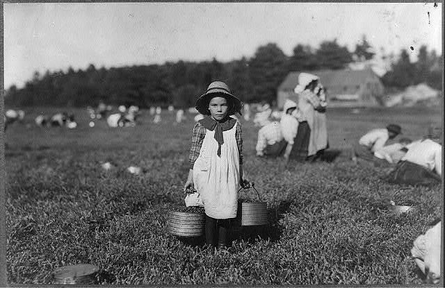 Merilda. Carrying cranberries. Witness, Richard K. Conant.  Location: Rochester [vicinity] - Eldridge Bog, Massachusetts.