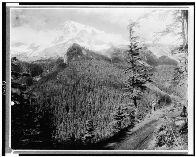 [Mt. Rainier from Rickseekers Point with man and woman standing looking over the forest, Mt. Rainer National Park, Washington] / Curtis & Miller, Seattle.