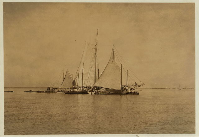 Oyster boats loading the barge, The Reef,.  Location: Mobile Bay, Alabama.