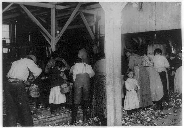 Oyster shuckers at work in Barataria Canning Co. Small girls working on left of photo are Gertrude Kron, five years old, Pauline ---, eight years old. Also a small boy. Mildred Kron, three years old (not working in photo) works some every day, mother said. See preceding photos.  Location: Biloxi, Mississippi.