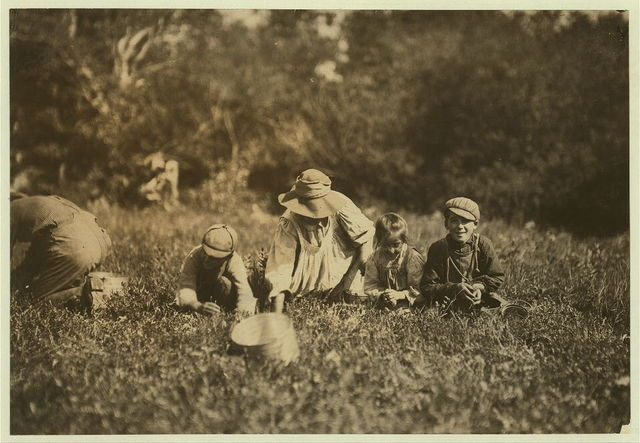 Thomas Vegas and family. Johnny, 11 years, Joe 9 years, and little Louise De Pont.  Location: Falmouth [vicinity] - W.W. Eldridge, Jr., Bog, Massachusetts.