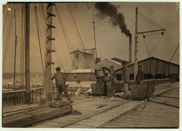 Unloading oysters on the dock. Alabama Canning Co.,.  Location: Bayou La Batre, Alabama.