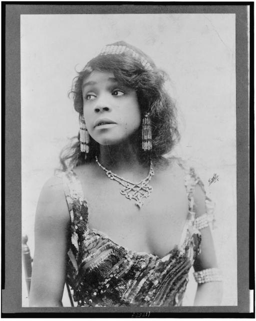 [Ada (Aida) Overton Walker, half-length portrait, facing left] / White, N.Y.