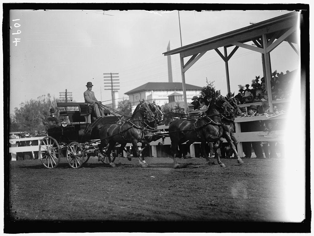HORSE SHOWS. 4-HORSE TEAMS