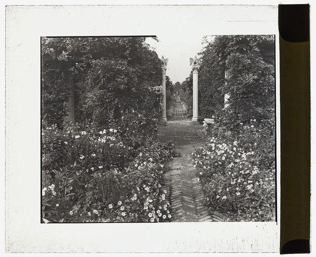 """[""""The Orchard,"""" James Lawrence Breese house, 151 Hill Streeet, Southampton, New York. Pathway]"""