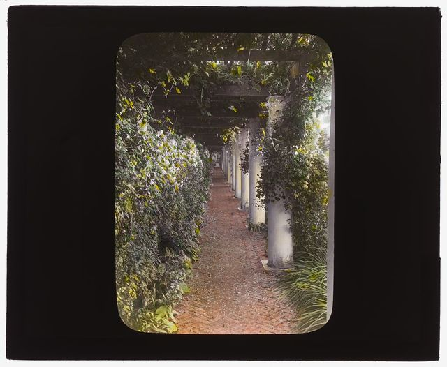 """[""""The Orchard,"""" James Lawrence Breese house, 151 Hill Street, Southampton, New York. Pergola]"""