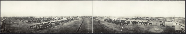 6th Cavalry corral & camp, Texas City, Tex., 1913