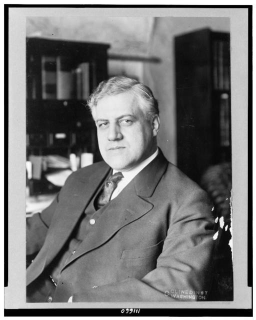 [Alexander Mitchell Palmer, half-length portrait, seated, facing left]