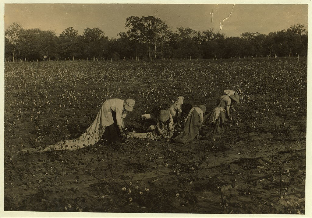 """All these children five years, six years, seven years, nine years and two a little older, were picking cotton on H.M. Lane's farm Bells, Tex. Only one adult, an aunt was picking. Father was plowing. Edith five years, (see preceding photo) picks all day. """"Hughie,"""" six years old, girl, picks all day. Alton, seven year old boy picks fifty pounds a day. Ruth, nine years old, picks seventy-five pounds a day. Rob and Lee are about ten or eleven years old. The very young children like to pick, but before long they detest it. Sun is hot, hours long, bags heavy.  Location: Bells, Texas."""