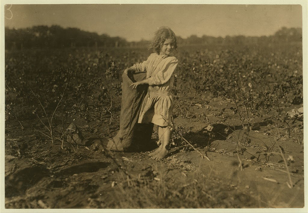 """Edith, a five year old cotton picker on H.M. Lane's farm Bells, Tex. (near Denison). """"She's a good steady picker. Works all day long,"""" her aunt said. See also other photos taken here.  Location: Bells, Texas."""