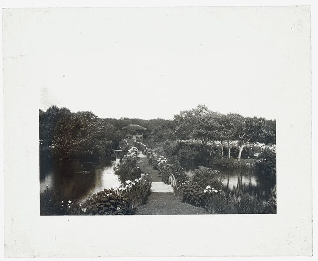 "[""Grey-Croft,"" Stephen Swete Cummins house, Huntting Lane, East Hampton, New York. Japanese iris garden]"