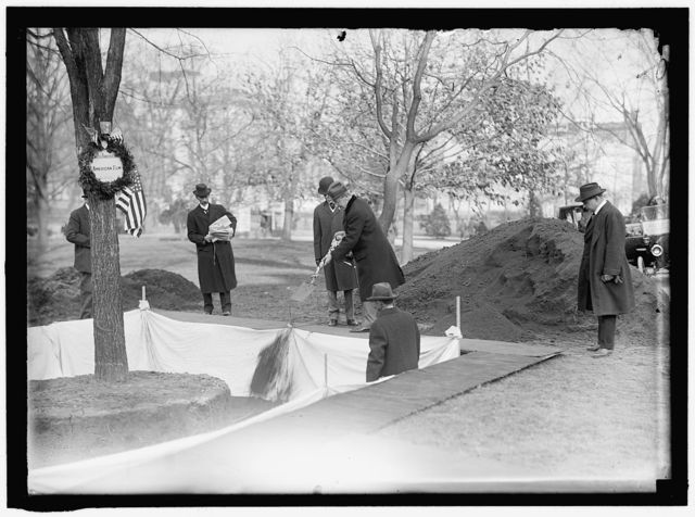 OWEN, F.D., PUBLIC BUILDINGS AND GROUNDS CUSTODIAN OF THE FLAGS, LEFT, PLANTING TREE; HARTS, WILLIAM W., COL., U.S.A.; MILITARY AIDE TO PRESIDENT WILSON