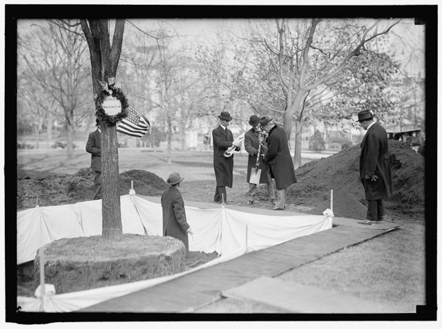 OWEN, F.D. PUBLIC BUILDINGS AND GROUNDS CUSTODIAN OF THE FLAGS. LEFT, PLANTING TREE. PRESIDENT WILSON