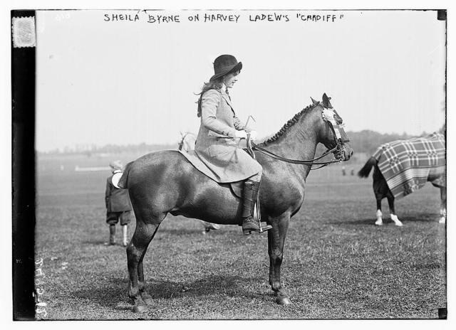 """Sheila Byrne on Harvey Ladew's """"Cardiff"""""""