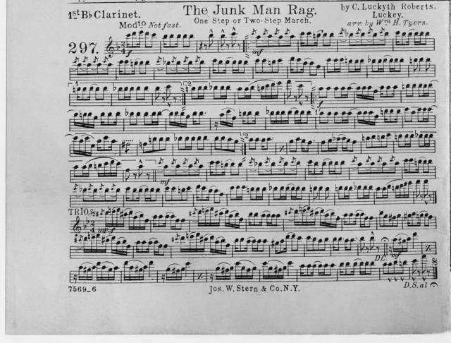 The  junk man rag
