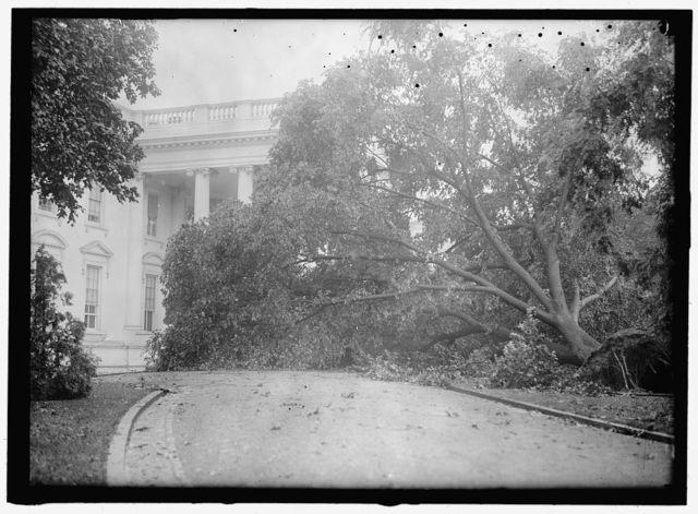 [White House] STORM DAMAGE