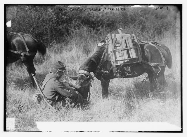 Pony carrying French Mitrailleuse