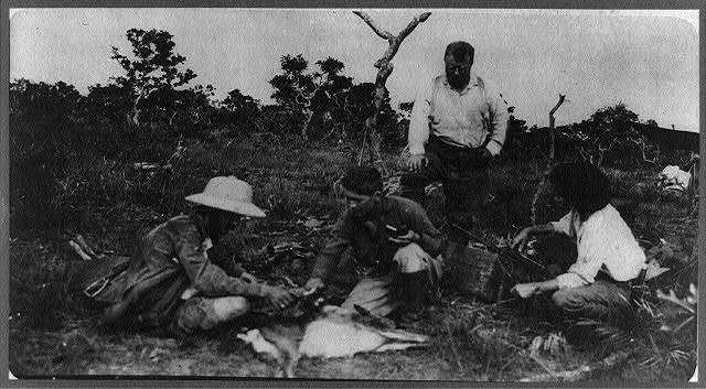 Theodore Roosevelt, Kermit Roosevelt & the naturalists