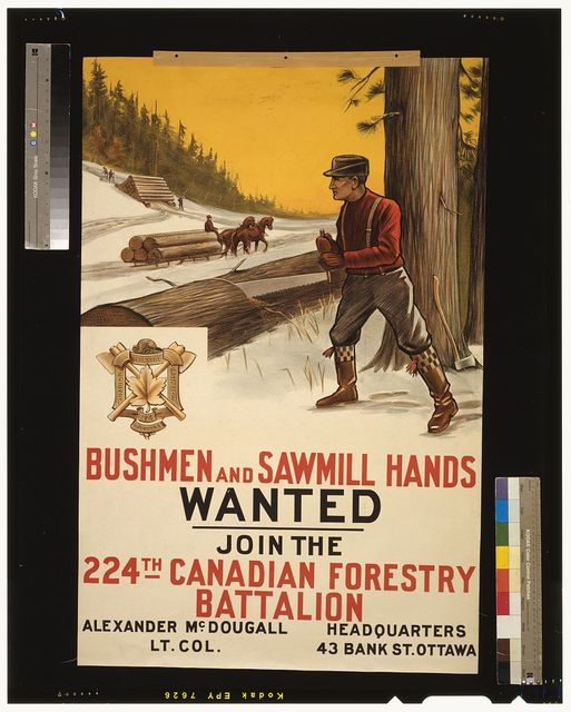 Bushmen and sawmill hands wanted. Join the 224th Canadian Forestry Battalion