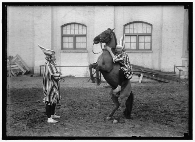 [CLOWNS AND HORSE]