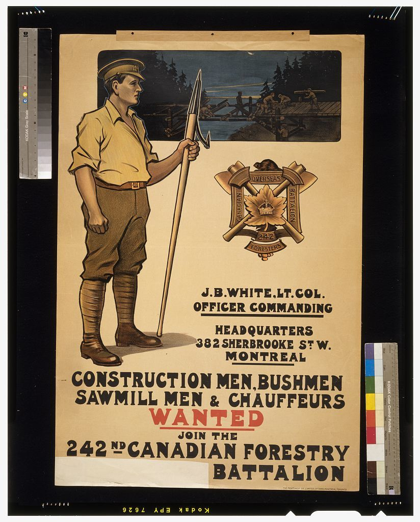 Construction men, bushmen, sawmill men & chauffeurs wanted. Join the 242nd Canadian Forestry [section of text cut away: Overseas?] Battalion