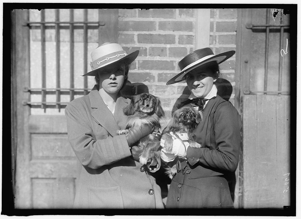 LITTANER, MISS CATHERINE L. DOG SHOW