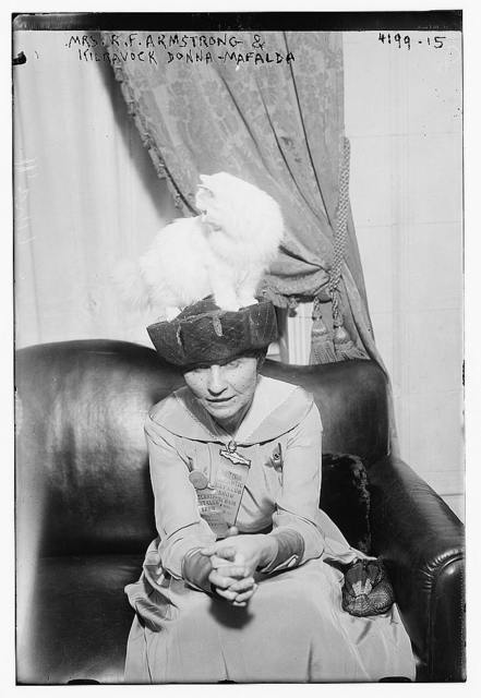 Mrs. R.F. Armstrong & Kilravock Donna-Mafalda [cat]