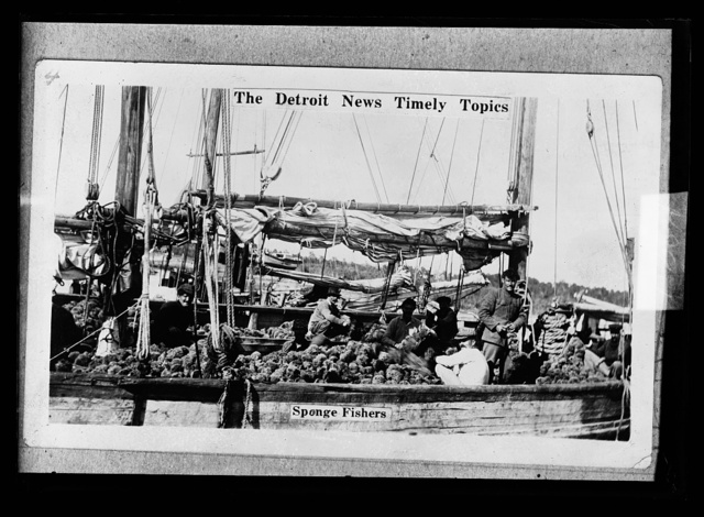The Detroit news timely topics.  Sponge fishers