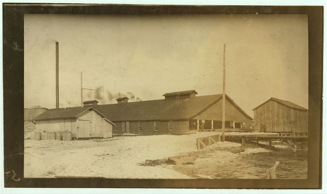 Dunbar & Dukate oyster cannery. According to the testimony of a number of the parents and children, this factory reverses the child labor law to suit its own convenience, and probably to avoid detection. Instead of excluding the young children from work before six o'clock according to the law, they let the young children work from four until seven, and then send them home.  Location: Biloxi, Mississippi / L.W. Hine.