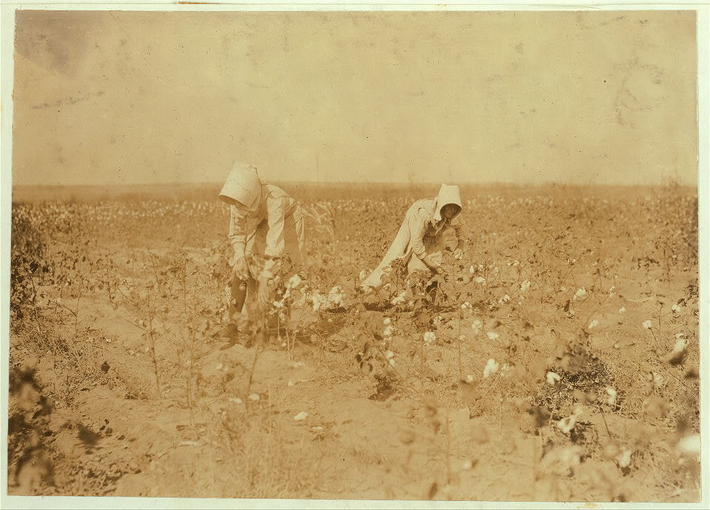 Edith, 11 years old and Blanche 13. Each picks about 100 pounds of cotton a day. Go to Beaver Bend School when through. Father, W.T. Rumage, Route 1, Lawton, Okla.  Location: Comanche County, Oklahoma / Lewis W. Hine.