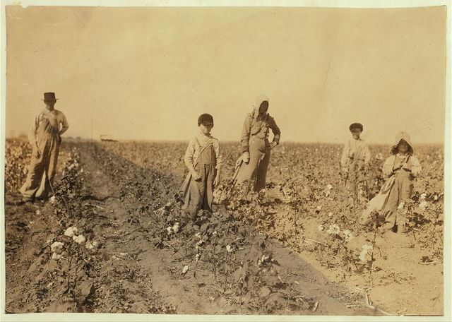 "Family of J. M. Payne, Route 1, Lawton, Okla. Mrs. Payne and four children picking cotton. Mart, 5 years, picks from 10 to 20 pounds a day (average) Harley, 7 years, picks 40 pounds a day (average) Grandison, 10 years, pickes 75 pounds a day (average) Hubert, 15 years, picks 200 pounds and over. Go to Fairview School. Mother said: ""Mart, he haint old nuff to go to school much, but he kin pick his 20 pounds a day. Mostly 10 or 15 pounds."" Father is a renter.  Location: Comanche County, Oklahoma / Lewis W. Hine."