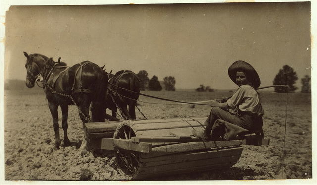[Harry Dewitt driving a roller on his father's farm. See report.]  Location: [West Point vicinity, Kentucky]. / L.W. Hine.