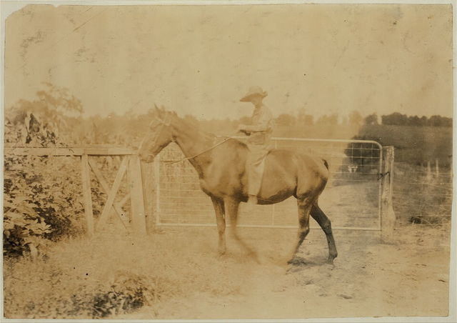 """John Aldridge, 14 years old. Father, Hense Aldridge, R. Route 1, Winchester. Driving horse home. Works on tobacco. Expects to start school in """"couple of weeks."""" It is now several weeks after school opened. Division 2, Clark Co., Ky.  Location: Clark Co.--Winchester, Kentucky / Lewis W. Hine."""