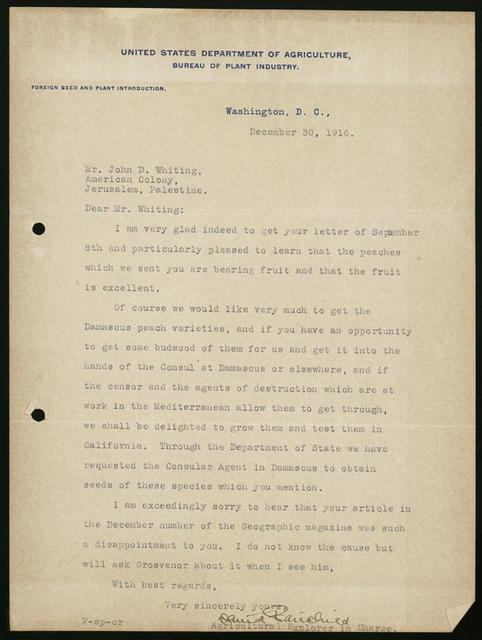 Letter from David Fairchild, U.S. Department of Agriculture, Bureau of Plant Industry, Washington, D.C., to John D. Whiting