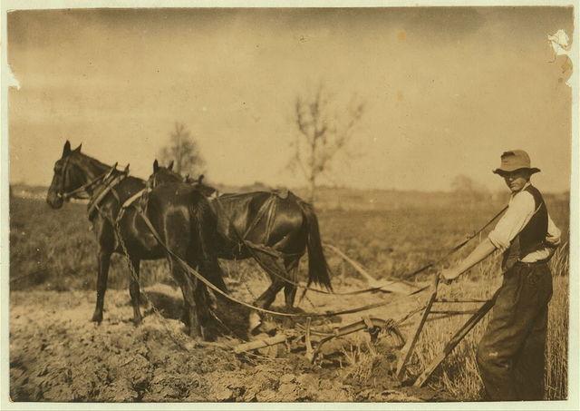 Lummie Durrett. See report.  Location: Elizabethtown [vicinity], Kentucky / L.W. Hine.